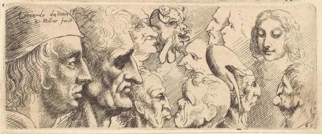 Da Vinci variety of heads