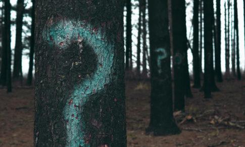 5 Important Questions about Graphology